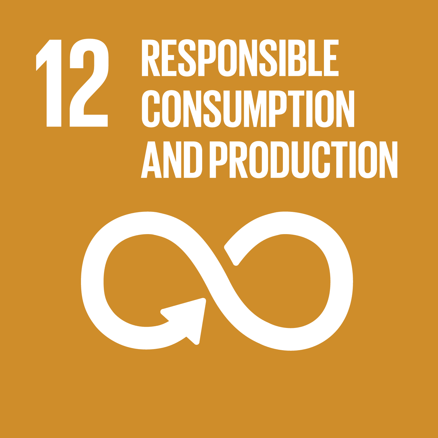 United Nation SDG: Responsible Consumption & Production